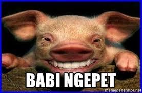 Meme Babi - babi ngepet babi ngepet meme generator