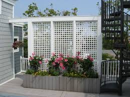 Backyard Privacy Screen by 256 Best Privacy Fence Images On Pinterest Privacy Fences