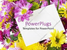 spring field powerpoint template whiteboardfreeforumsorgspring