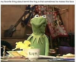 Frog Face Meme - my favorite thing about kermit the frog is that sometimes he makes