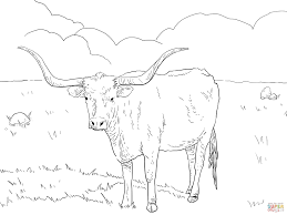 longhorns texas team coloring page free printable coloring pages