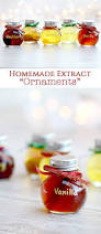 homemade extract ornaments easy christmas gift sprinkle some fun
