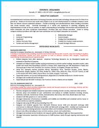 Sample Resume Objectives Computer Programmer by Outstanding Cto Resume For Professionals
