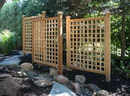a trellis not only adds beauty to your landscape but function as