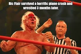 Ric Flair Memes - without ric flair there would be know wwe thechive