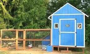 blue cube chicken coop backyard chickens