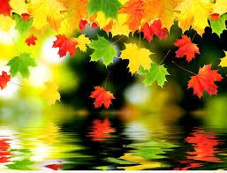 images wallpaper autumn
