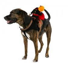 headless horseman costume 14 costumes for dogs allyou