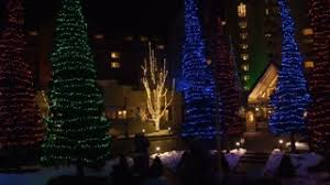 blue white christmas lights aerial red blue green pine trees with christmas lights parallaxing