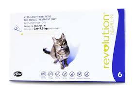 best flea control for cats revolution flea u0026 worm control for