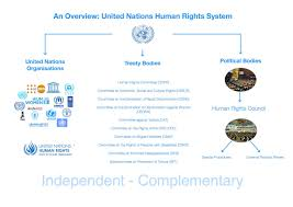 international organizations for human rights law at the end of the day the architecture of human rights at the