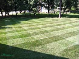 lawn care programs for do it yourself professional lawn care and landscape maintenance services in