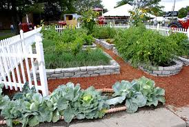 home vegetable garden layout decorating clear
