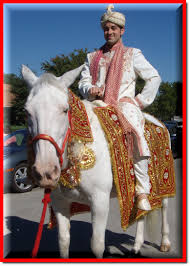 indian wedding groom indian wedding rental
