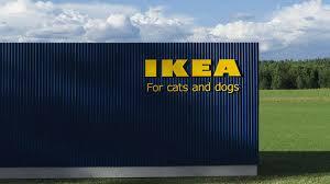 ikea si e social ikea wprowadza produkty dla zwierząt kiedy kolekcja lurvig pojawi