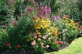 Garden Boarder Ideas Ideas For Planting Garden Borders Pdf