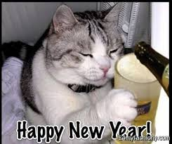 Happy New Year Cat Meme - cat happy new year festival collections