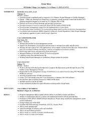 cad resume samples velvet jobs