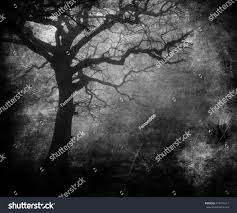 halloween abstract black white scary tree abstract grunge stock photo 378476317