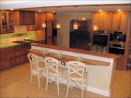 Pull Out Kitchen Cabinet Shelves Kitchen Kitchen Cabinet Organization Ideas Pull Out Kitchen