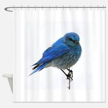 Bird Shower Curtains Blue Bird Shower Curtains Cafepress