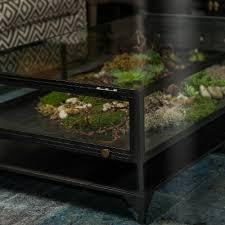 glass shadow box coffee table shadow box coffee table facil furniture