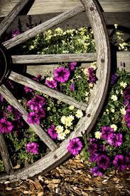 best 25 old wagons ideas only on pinterest wagon wheel wagon
