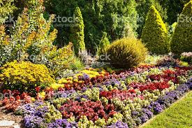landscaped formal ornamental flower garden with trees stock photo
