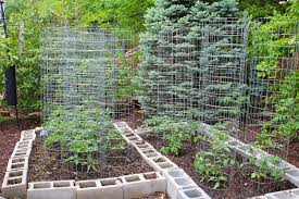 home vegetable garden design ideas garden goals pinterest