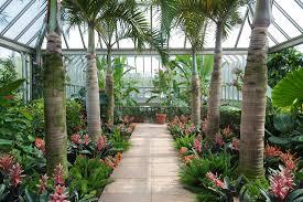 indoor gardening supplies essentials you need indoor plants expert