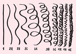 Hair Types by How To Figure Out Your Curly Hair Type And Why It Actually Helps