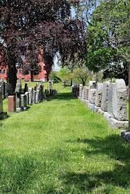 pictures of tombstones rows of tombstones in rustic cemetery stock photo image of rustic