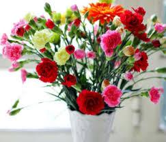 flower delivery ta flower shop top 10 flowers floranext florist websites floral