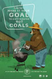 Wildfire Design Agency by New Smokey Bear Digital First Creative Highlights Lesser Known