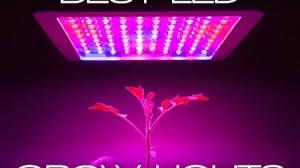 1000 watt led grow lights for sale best 1000 watt led grow light archives technoven