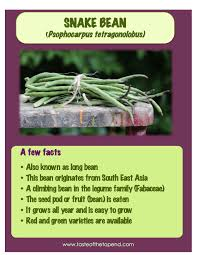 local produce list and fact sheets u2013 tasteofthetopend