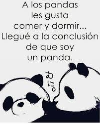 Memes De Pandas - pin by maría oco on frases animo pinterest auras and memes