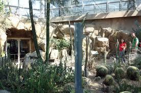 traversing the brooklyn botanic garden with isamu noguchi