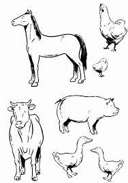 farm animals coloring page printable 51 farm animal coloring pages 3727 farm animal