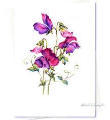 sweet pea flowers watercolour flower everlasting sweet pea card original