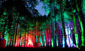 10 best us festivals of 2013 10 electric forest travel hymns