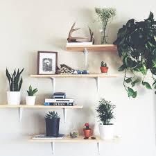 Modern Wooden Shelf Design by Best 25 Plant Shelves Ideas On Pinterest Bathroom Ladder Shelf