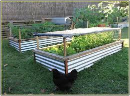 11 best veggie garden beds images on pinterest raised beds