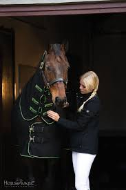 42 best horse therapy images on pinterest horse therapy horse