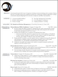 Human Services Sample Resume by 100 Resume Writing Services Mn Resume Writing Service And