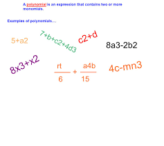 worksheet multiplying monomials and polynomials laurelmacy