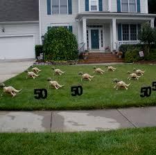 yard decorating ideas home design creative on yard decorating
