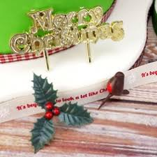 Christmas Cake Decorations Plastic by Christmas Cake Decorations Trees Plastic Decorations U0026 Mottos