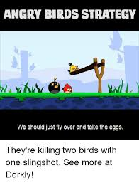 Angry Birds Meme - angry birds strategy we should just fly over and take the eggs they