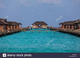 water bungalows on paradise island paradise island lankanfinolhu